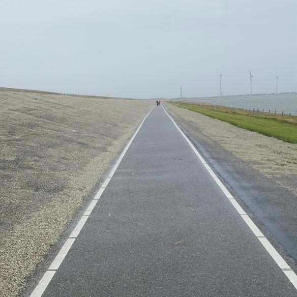 Hoe sterk zijn de eenzame lopers die kromgebogen over de dijk tegen de wind.....